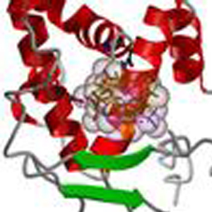 ligand2