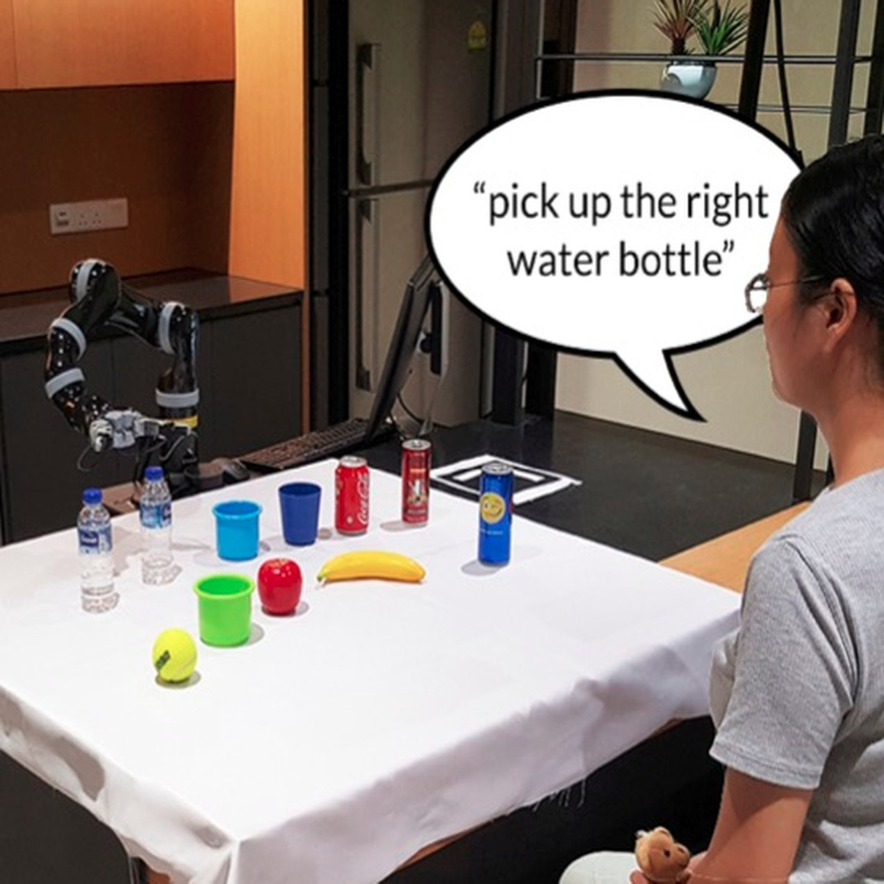 Natural Language Interaction with Robots